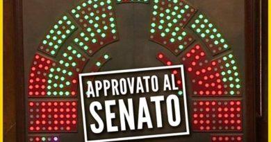 Reddito Cittadinanza Senato Approva